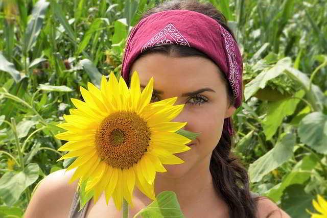 sunflower-2699771_640